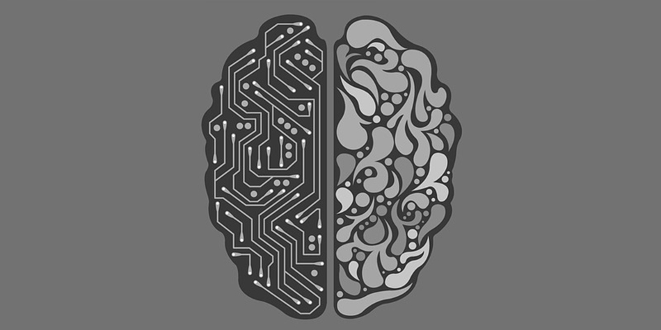 Explainer Whats Difference Between >> Explainer What Is Machine Learning Profolus