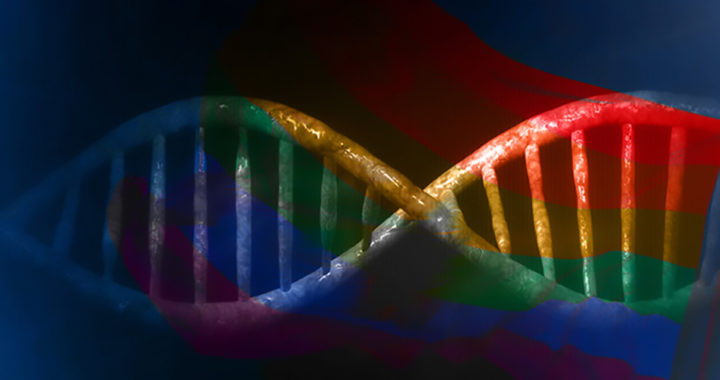 Theories: Link Between Evolution and Homosexuality